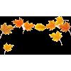 falling leaves - Plantas -