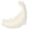 Feather White - Objectos -