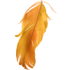 Feather Orange - Items -