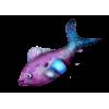 Fish Purple - 动物 -