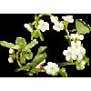 floral - Plantas -