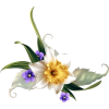 floral corner - Plants -