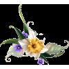 floral corner - Rośliny -