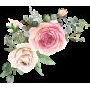 floral graphic - Plants -