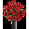 flores - Rośliny -