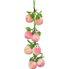 flower - Fruit -