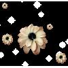 Flower Plants Beige - Plantas -