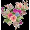 Flower Plants Colorful - Plantas -