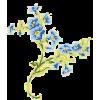 Flower Plants Blue - 植物 -