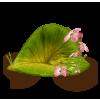 Flower Green Plants - Biljke -
