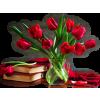Flower Tulips - Plants -