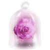 Flower Pink - Items -