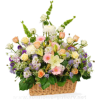flower basket - Plants -
