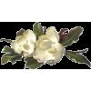 flower magnolia - Items -