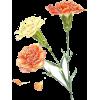 flowers - Otros -