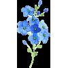 flowers - Ilustrationen -