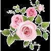 flowers - Растения -