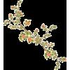 flowers - Pflanzen -