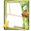 Green Frames Casual - Frames -