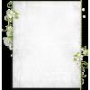 Frame White - Frames -