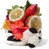 fruit - Atykuły spożywcze -
