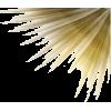 gold fan corner - Ilustracje -