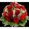 Flowers Red Plants - Plantas -