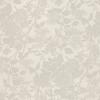 Frame Beige Casual Background - Background -