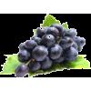 grape - Fruit -