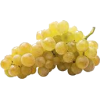 grapes - Fruit -