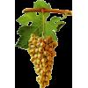 grapes - Voće -