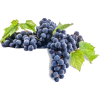 grapes - Fruit -