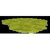 grass - Biljke -