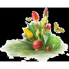 grass flower plants red yellow - Plants -