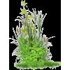 green plants - Plants -