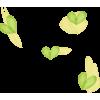 Heart Green - イラスト -