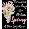 hello spring - Testi -