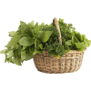 Herb Variety2.png - Nature -