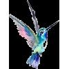 hummingbird - Životinje -