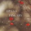 january - Priroda -