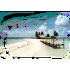 Beach - Natureza -