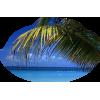 Beach - Priroda -