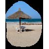 Beach - 自然 -