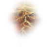 Bolt - Nature -