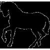Horse - Illustrations -