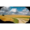 Nature Road - Nature -