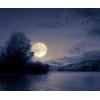 Nature Moon Lake - Nature -