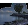 Nature Lake - Nature -