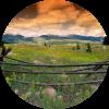 Nature Medow - Nature -