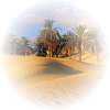 Nature Sand Desert - Nature -